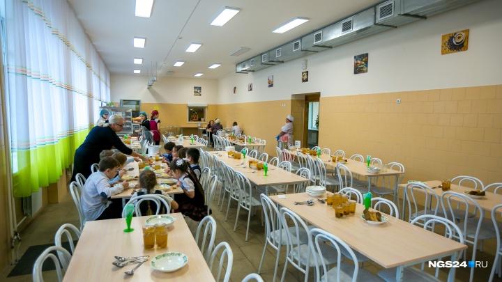 Депутат горсовета увидел сговор в закупке на организацию питания во всех школах Красноярска
