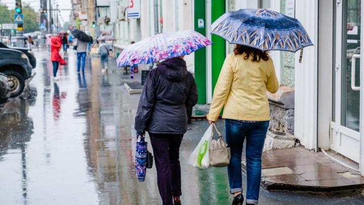 В ноябре в Перми выпало рекордное за 100 лет количество осадков