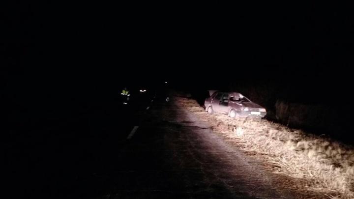 Пробила лобовое стекло: на трассе под Самарой водитель ВАЗ-21099 сбил лошадь