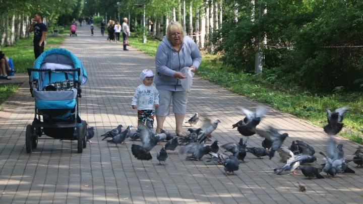 Александр Фролов: «Парк на Ленинградском проспекте наконец-то получил имя»