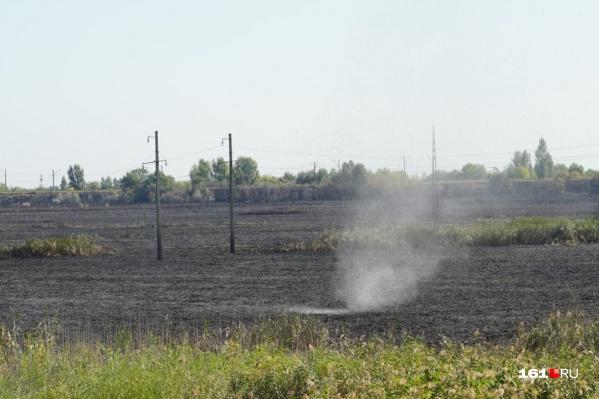 Огонь потушили 27 августа в 23:42. Пламя выжгло пять гектаров растительности