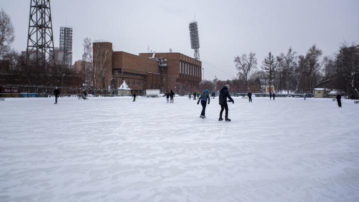 Министр спорта Новосибирской области попросил разрешения забрать у мэрии акции стадиона «Спартак»