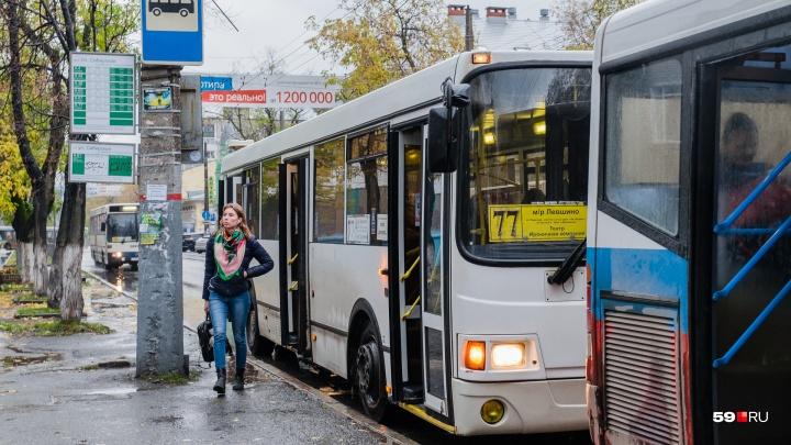 «Обоснованный тариф — 23 рубля». Пермские депутаты высказали своё отношение к транспортной реформе