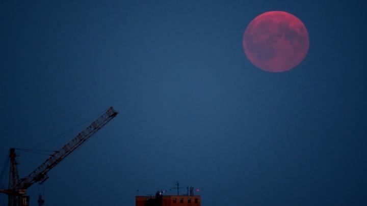«Это было незабываемо»: пермяки делятся фотографиями «кровавой» Луны