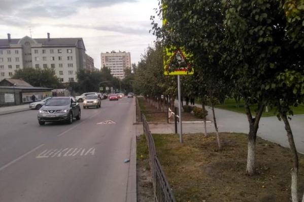 В Новосибирске множество знаков закрыты от водителей листвой