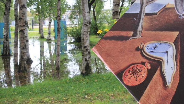 Утекающее лето: несерьезный взгляд на «аквапарк» в Архангельске и водный футбол среди чаек