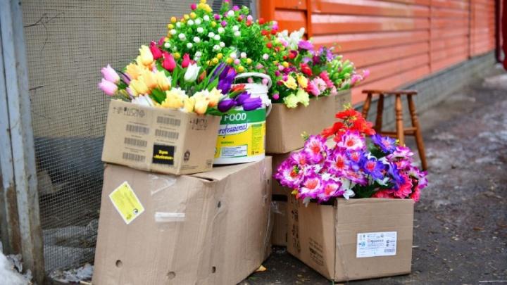 Мэрия Ярославля запретила продавать на улицах цветы к 8 Марта