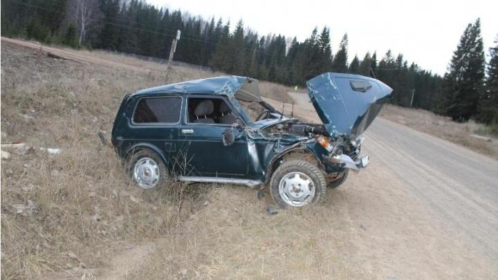 В Прикамье «Нива» вылетела на трассе в кювет: водитель погиб