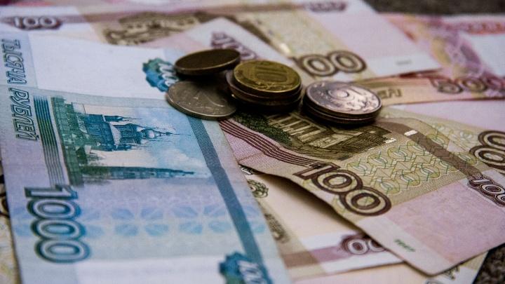 Правительство НСО: новосибирец сможет прожить на 11 159 рублей в месяц