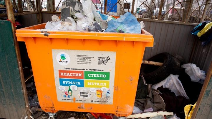 Ярославцев будут штрафовать на 350 тысяч рублей за мусор
