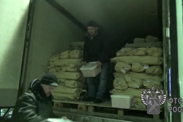 Водитель пытался вывезти из области почти 20 тонн горбуши
