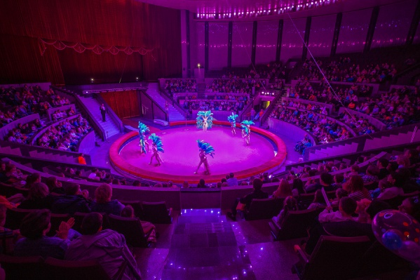 Кресла в цирке не меняли 47 лет