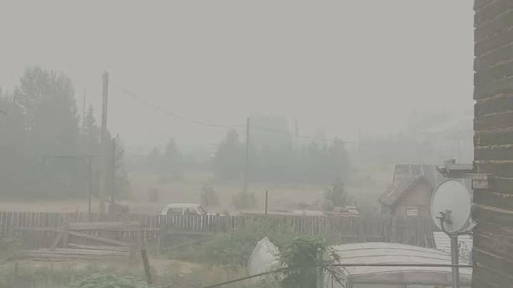 «Версия, что лес жгут специально — за гранью добра и зла»: депутат ответил на заявление Давыденко