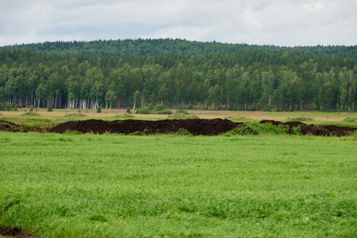 Вот та площадка, где могут расположить новый полигон: согласно заключению Роснедр, здесь находится месторождение торфа