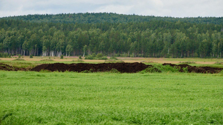 Шиес отменяется? Под площадкой на юге Екатеринбурга, где хотят разместить мусорный завод, нашли торф