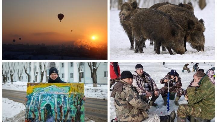 Выходные в Нижнем Новгороде: с реальными кабанами, зимним дрифтом и лошадками