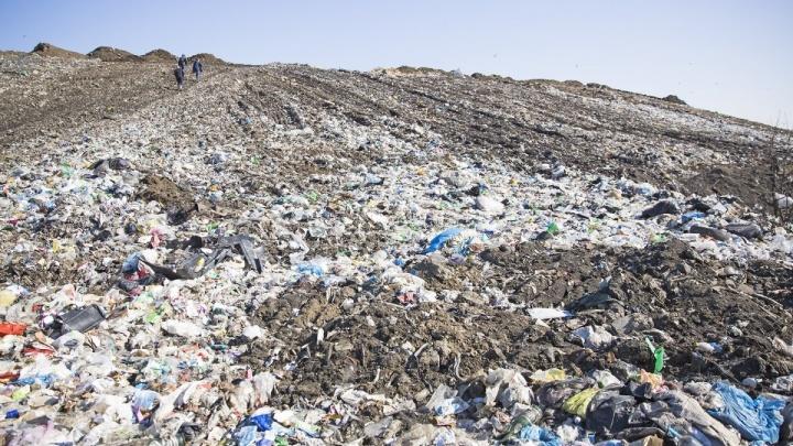 Власти заявили о прекращении ввоза в Ярославль московского мусора: как заполнен полигон «Скоково»