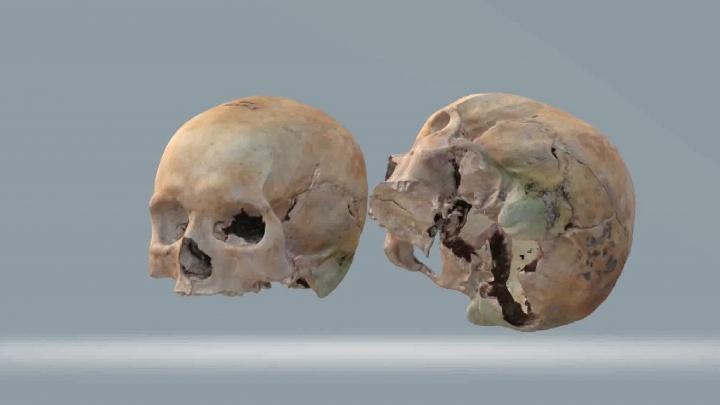 Собрали по кусочкам: ученые из Башкирии воссоздали череп сарматки