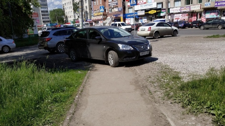 «Я паркуюсь как...»: «император» против пешеходов и флешмоб на «зебре»