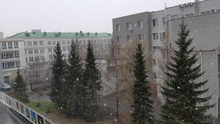Пришла и наша очередь: в Екатеринбурге дождь превратился в снег
