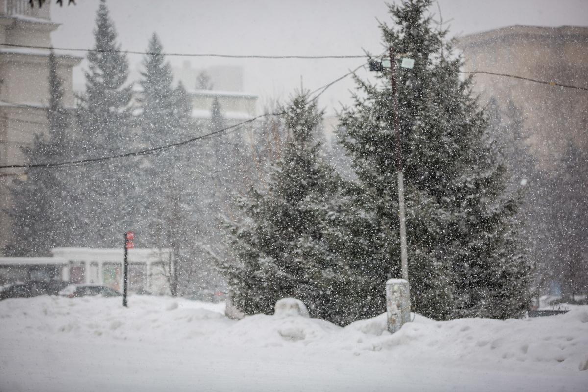 Снег усилился около полудня
