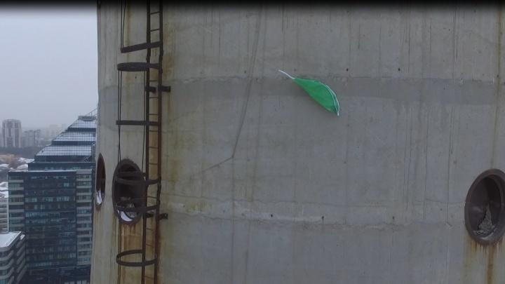 «Башня, не болей!»: екатеринбуржцы повесили на телебашню метровый лист подорожника