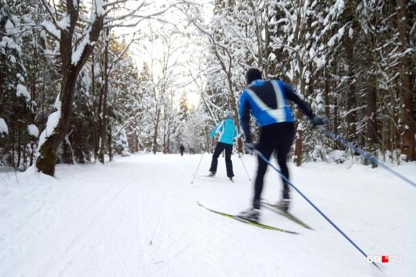 В выходные, 1 и 2 декабря, на базе «Динамо» на трассу вышли сотни лыжников