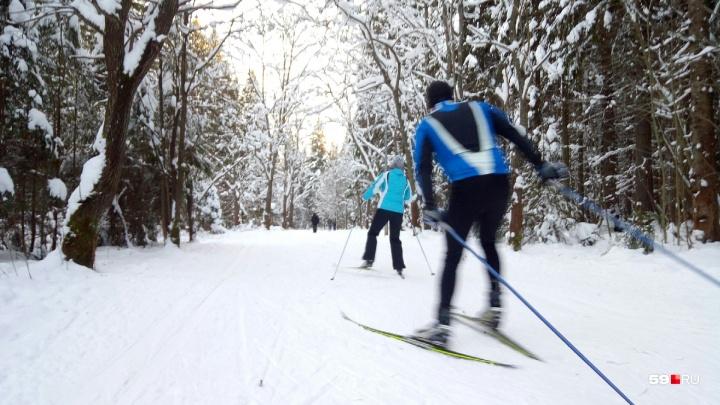 На трассах лыжной базы «Динамо» уже два года нет освещения. Что-то изменится?