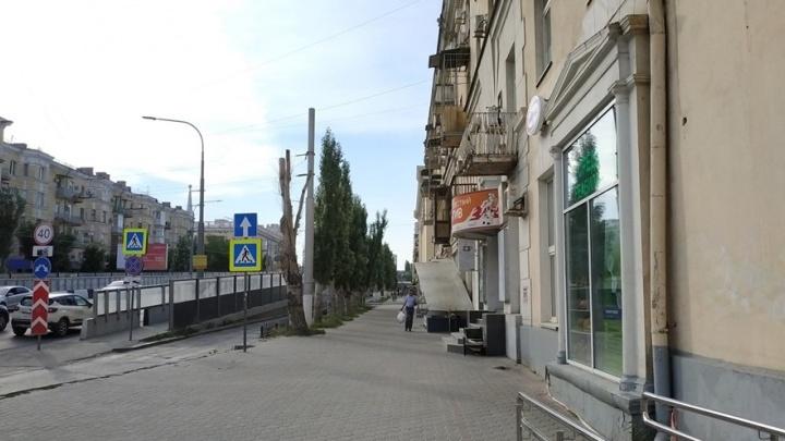 «Вместо деревьев нам предлагают стоянку»: в Волгограде обустроят парковку перед Комсомольским мостом