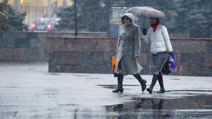 «Туманы и дожди»: Волгоградской области обещают снег