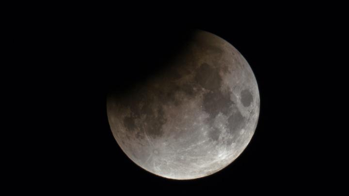 Невероятное лунное затмение: смотрим фотографии, которые сделали екатеринбуржцы