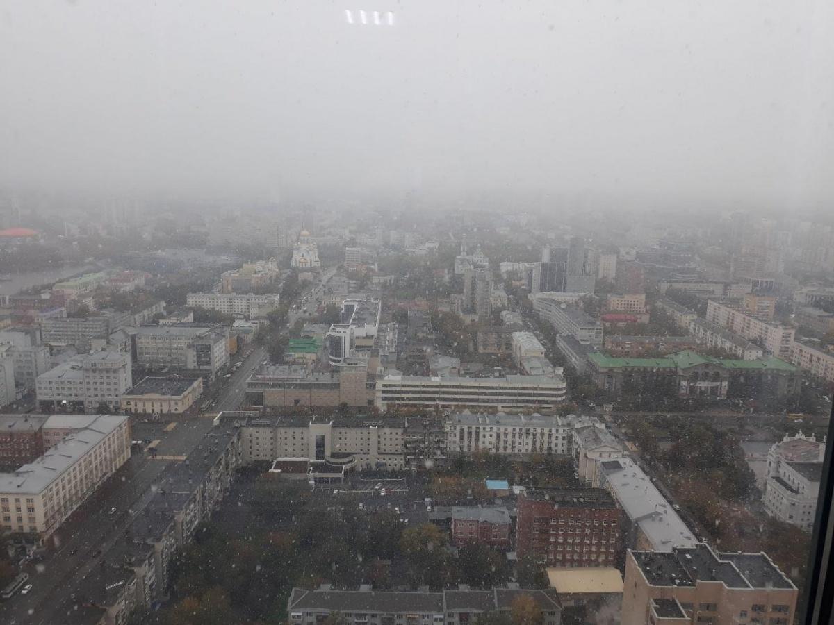 Вид из «Высоцкого»