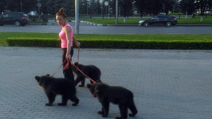 «Ласковы как щеночки»: найденные в тайге мишки гуляют по улицам и готовятся стать звездами цирка