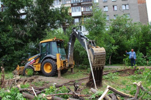Сегодня утром начали рубить деревья между ЦУМом и музеем Природы