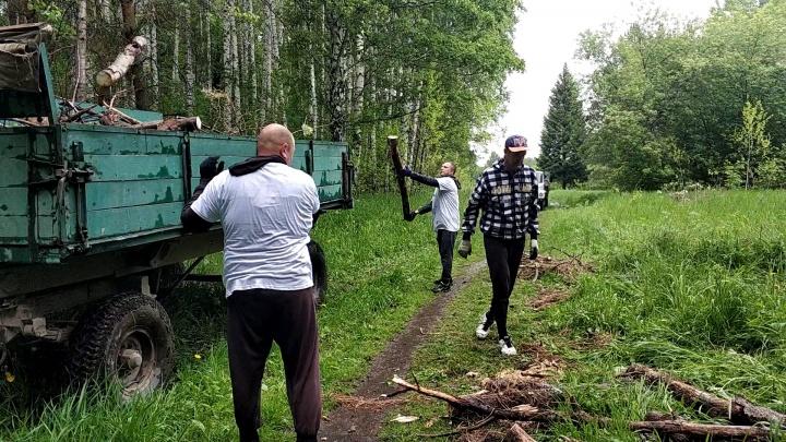 Новосибирцы вывезли из красивого леса четыре грузовика с мусором