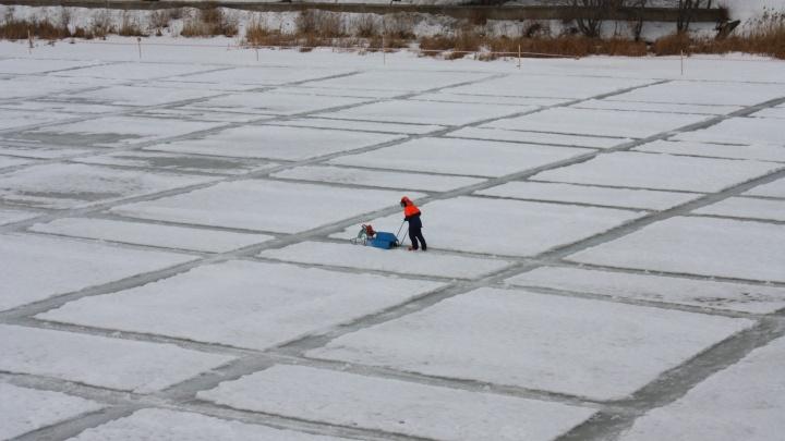 Подготовка к весеннему половодью в Кургане в самом разгаре: на Тоболе начали распиливать лёд