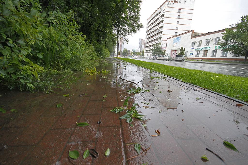 Дожди на Южном Урале продолжатся и на следующей неделе