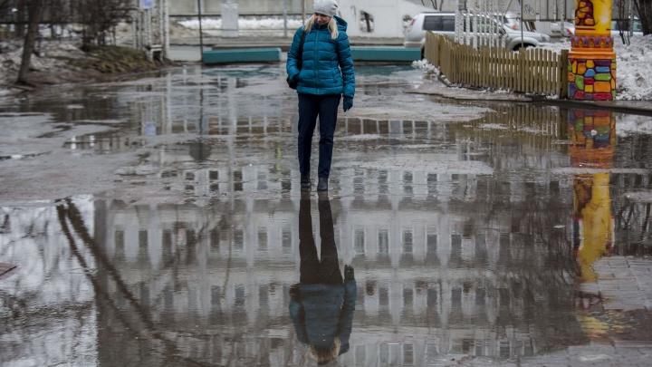 Ветрено и сыро: в Новосибирск придёт потепление со снегом