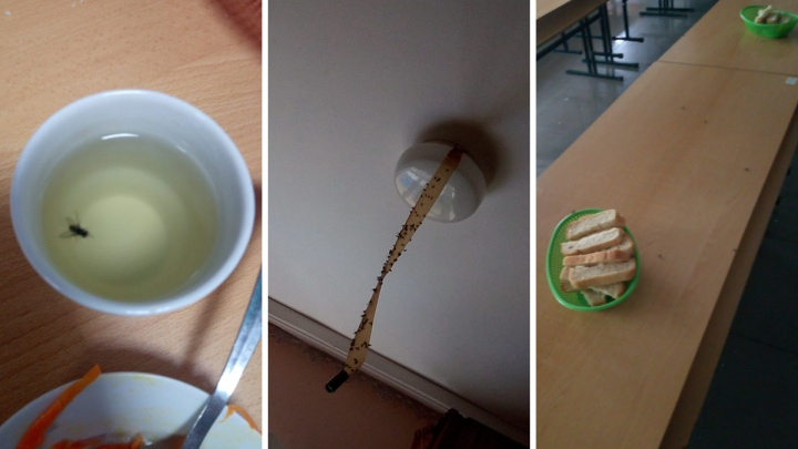 «Половина детей блюет и сидит в туалете»: свердловчанка пожаловалась на антисанитарию в санатории