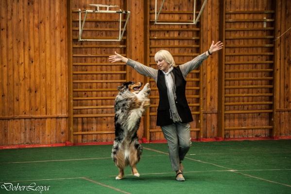 Зажигательные танцы устроили владельцы собак со своими любимцами