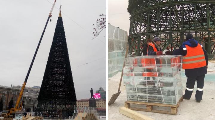 «Строители уверены, что успеют»: на площади 1905 года начали возводить ледовый городок и поставили елку