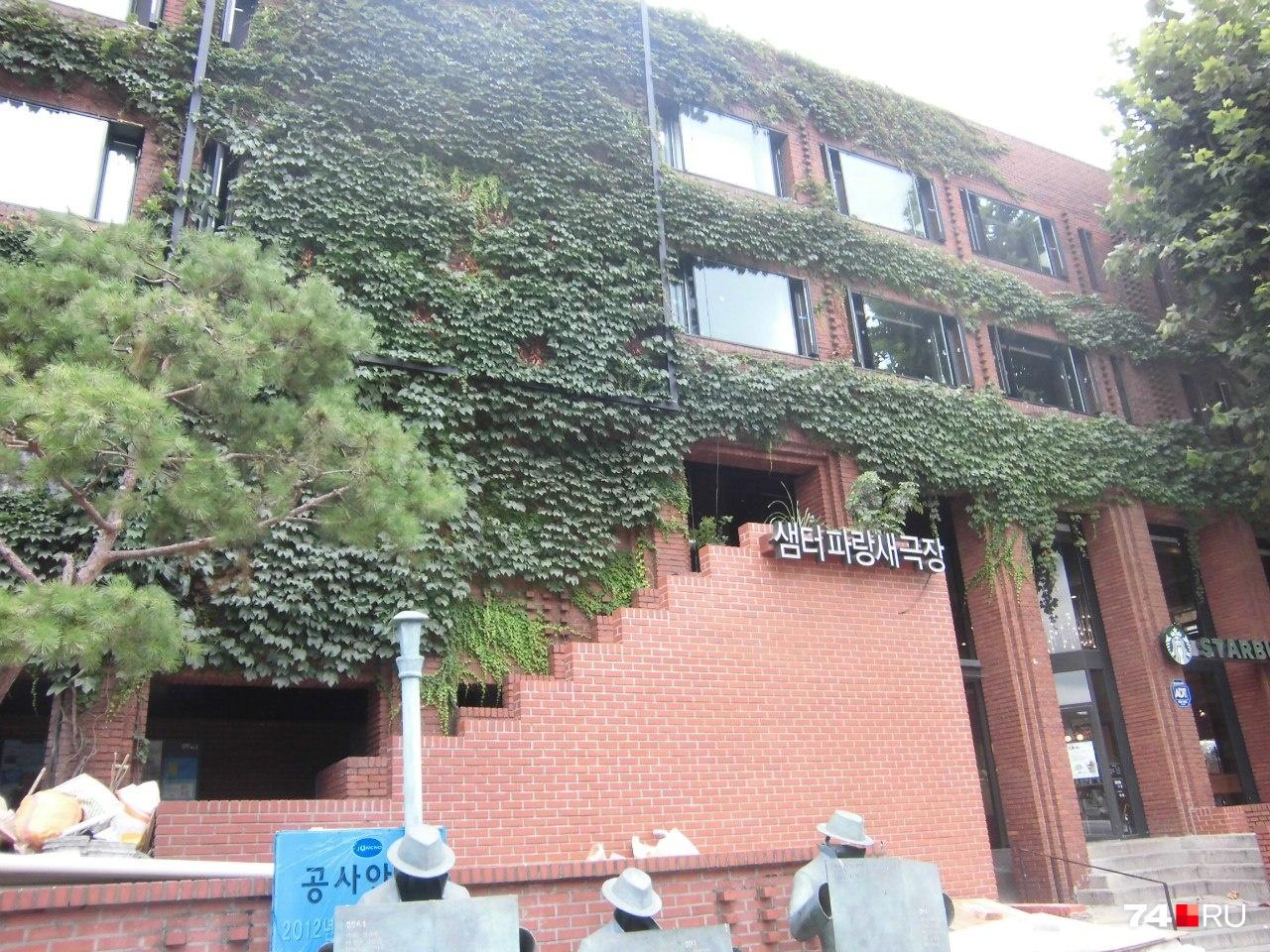 Жители Сеула разбивают вот такие сады на стенах и крышах зданий
