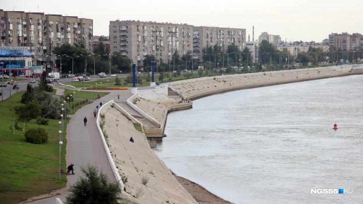 Омич предложил мэру города установить модель Солнечной системы на берегу Иртыша