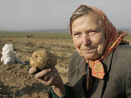 Тонна картошки и 25 километров туалетной бумаги: мэрия сделала запасы на случай ЧС