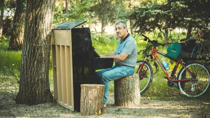 Цветы распустились на пианино под дубом: волгоградцев зовут заняться поэзией на траве