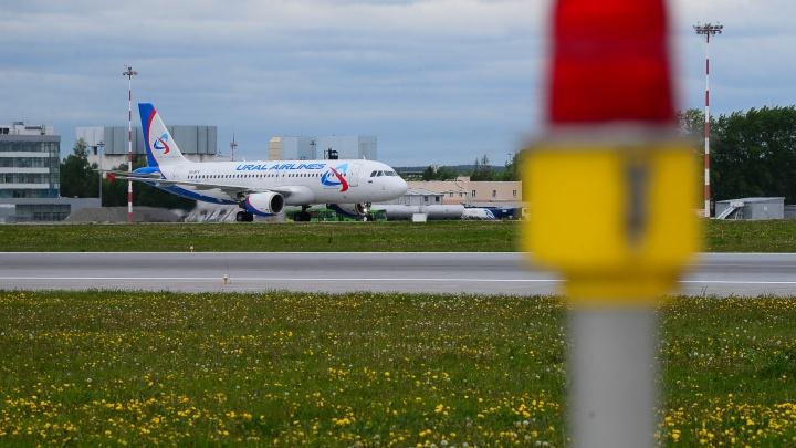 «Потери будут достаточно большие»: в «Уральских авиалиниях» отреагировали на запрет летать в Грузию