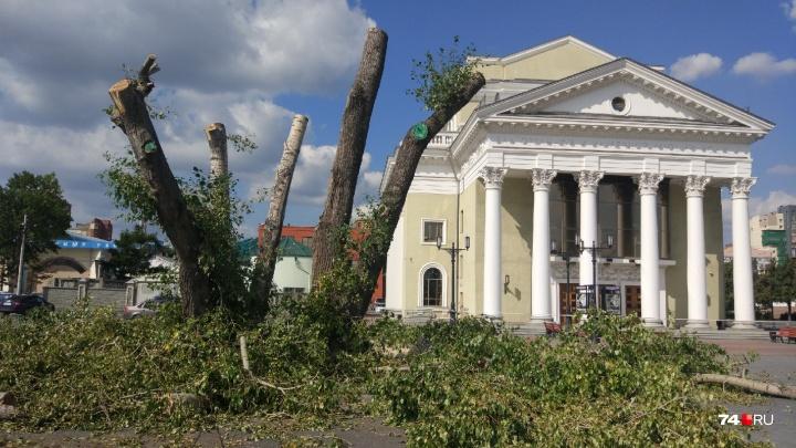 «Создавали уют, а теперь ветки лежат»: на набережной в Челябинске спилили деревья