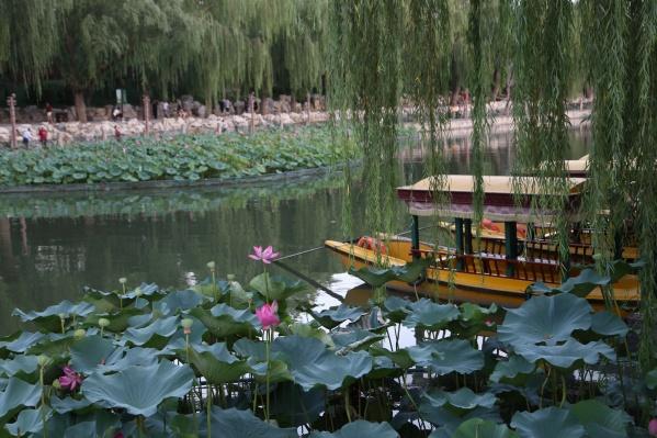 Билеты в Китай подешевели на 39% по сравнению с августом. На фото — паркБэйхай в Пекине
