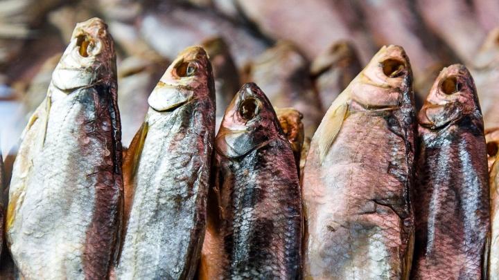 В Волгоградской области 12% рыбной продукции признали фальсифицированной