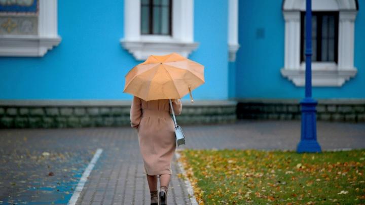 Теплый ветер с дождем: в Башкирии столбик термометра поднимется до +17 °С